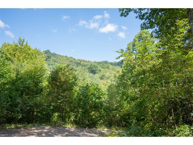 TBD Falls Trail #3, Canton, NC 28716 (#3319554) :: Rinehart Realty