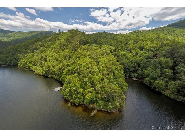 159 Songcatcher Court #159, Tuckasegee, NC 28783 (#3319770) :: Miller Realty Group