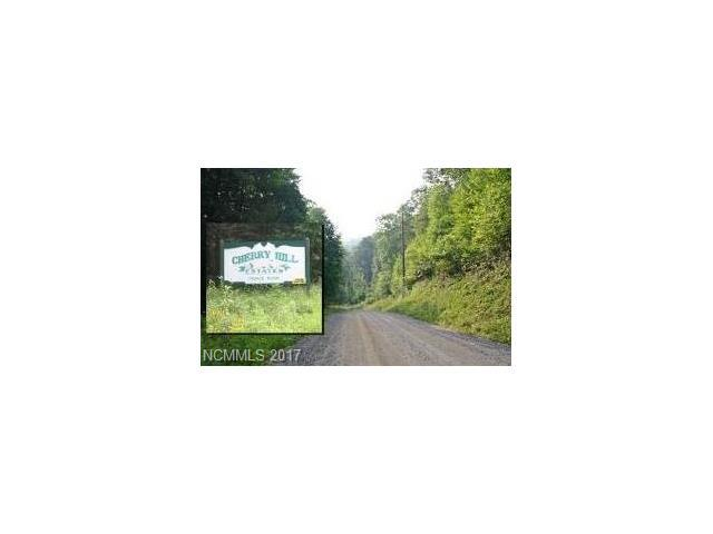 00 Connies Cove #20, Waynesville, NC 28785 (#3321536) :: Puma & Associates Realty Inc.