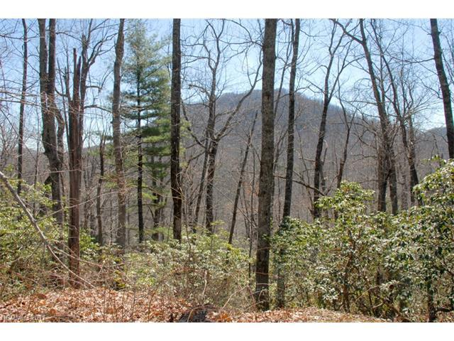 99999 Bird Creek Estates Road 1 & 2, Black Mountain, NC 28711 (#3321564) :: Rinehart Realty