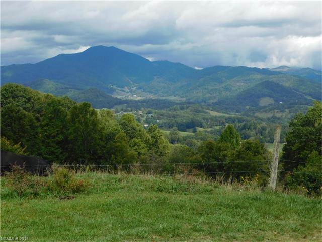 9 Hawk Mountain Road #9, Waynesville, NC 28785 (#3322856) :: Rinehart Realty