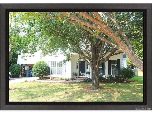 156 Samdusky Lane, Mooresville, NC 28117 (#3323259) :: Puma & Associates Realty Inc.