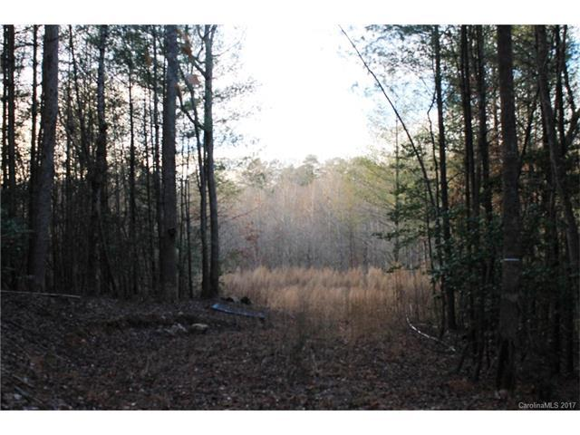 1123 Myers Mill Road, Olin, NC 28660 (#3323462) :: Stephen Cooley Real Estate Group