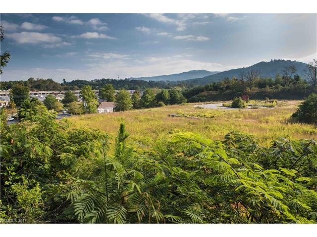 166 Weaver Boulevard, Weaverville, NC 28787 (#3323540) :: Exit Mountain Realty