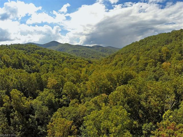 999999 Cook Cove Road #4, Weaverville, NC 28787 (#3323588) :: Miller Realty Group