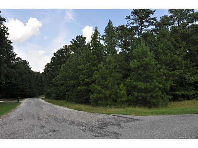 Lot 32 Holly Lane, Richburg, SC 29729 (#3323773) :: The Elite Group