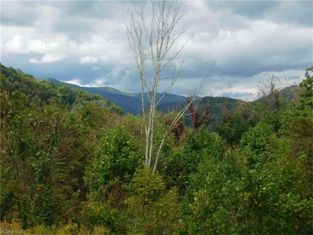 13 Hawk Mountain Road #13, Waynesville, NC 28785 (#3324049) :: Rinehart Realty