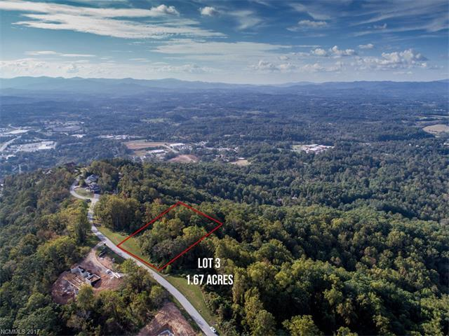 30 Longstreet Court #3, Weaverville, NC 28787 (#3324511) :: Homes Charlotte
