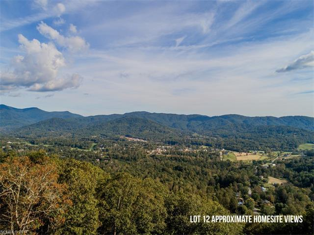 59 Longstreet Court #12, Weaverville, NC 28787 (#3324517) :: Homes Charlotte