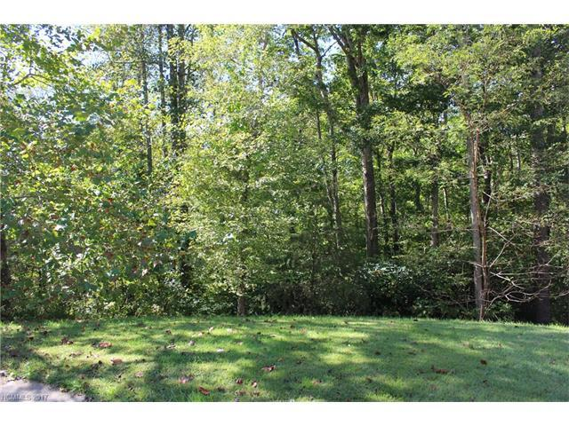 38 Gollum Drive, Fairview, NC 28730 (#3325614) :: Rinehart Realty