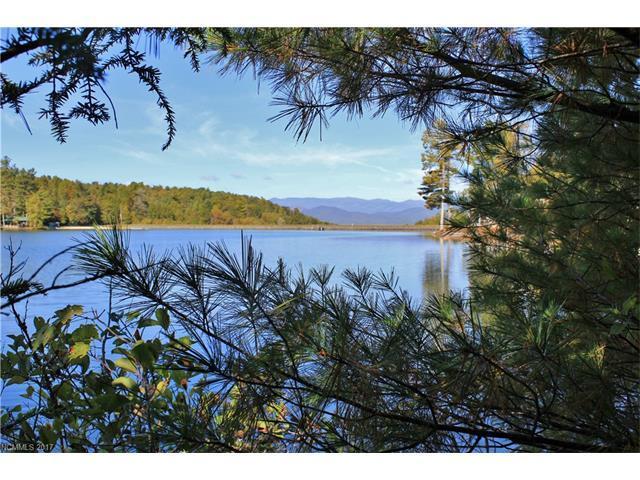 Lot 134 Eagle Lake Drive #134, Brevard, NC 28712 (#3325828) :: Stephen Cooley Real Estate Group