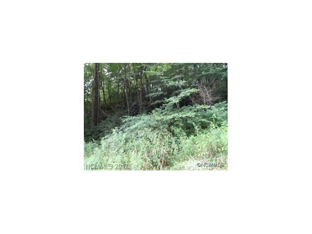LOT 39 Coyote Hollow Road, Waynesville, NC 28785 (#3328312) :: Puffer Properties