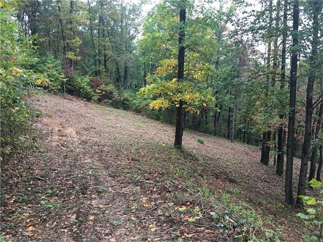 100 Whiteside Trail 44 & 45, Hendersonville, NC 28792 (#3328535) :: Leigh Brown and Associates with RE/MAX Executive Realty