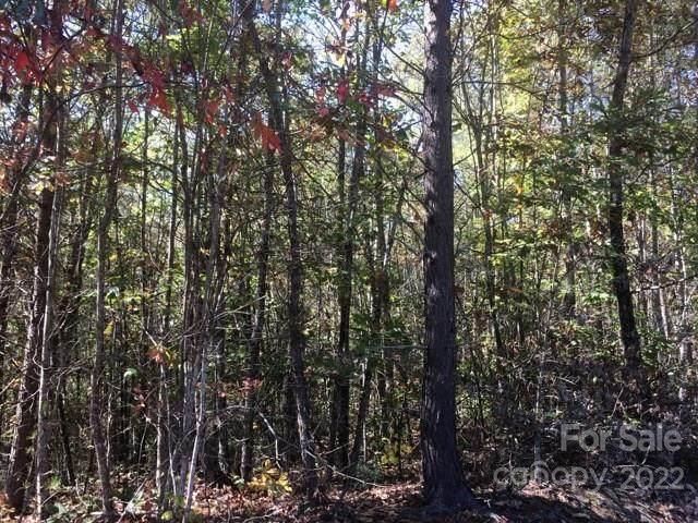 21 Sunshine Acres Road #21, Sylva, NC 28779 (#3328887) :: Rinehart Realty