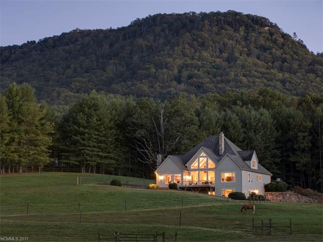 20 Farm View Road, Fairview, NC 28730 (#3329899) :: Exit Mountain Realty