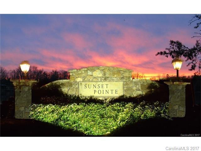 101 Sunset Pointe Drive, Salisbury, NC 28146 (#3330162) :: Pridemore Properties