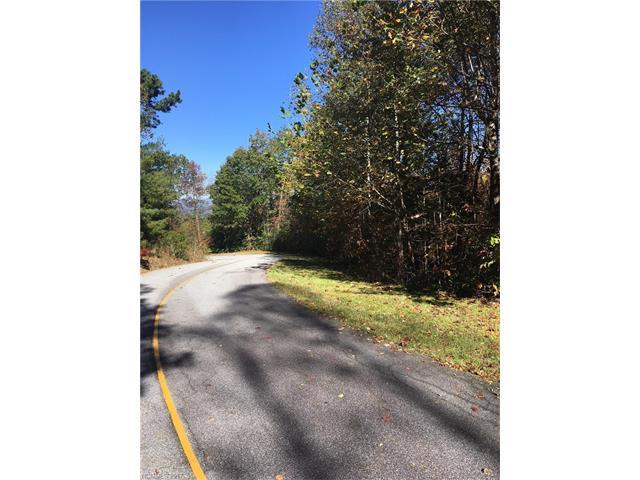 L1 Mcdonald Court Lot 1 Section E, Pisgah Forest, NC 28768 (#3330519) :: LePage Johnson Realty Group, LLC