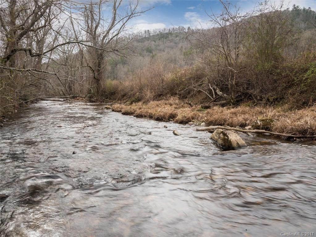 3725 Mills River Road - Photo 1