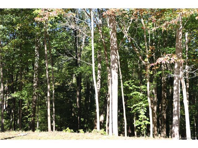 Lot 17 Ridgebrook Drive, Mooresville, NC 28117 (#3330907) :: Cloninger Properties