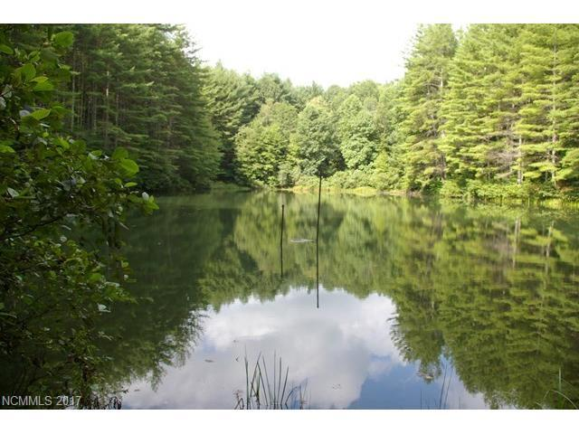 4 Gordon Lane, Burnsville, NC 28714 (#3330916) :: LePage Johnson Realty Group, LLC