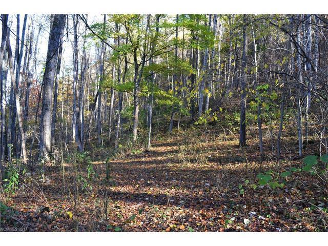 00 Echo Drive, Waynesville, NC 28786 (#3331697) :: Exit Mountain Realty