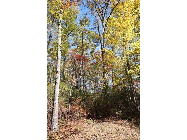 Lot 110 Ladd Ridge #110, Rosman, NC 28772 (#3331773) :: Puffer Properties