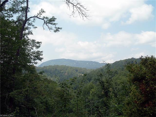 6 Whetstone Gap Road #6, Lake Toxaway, NC 28747 (#3331961) :: Rinehart Realty