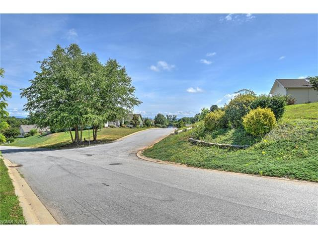 11 Climbing Aster Way #51, Asheville, NC 28806 (#3331987) :: Puffer Properties