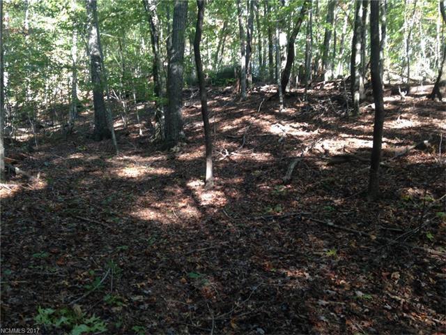 LOT 69 Cougar Lane #69, Saluda, NC 28773 (#3332029) :: Exit Mountain Realty