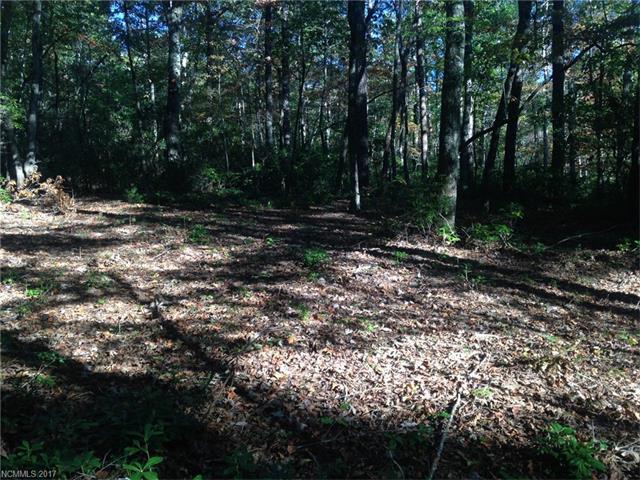 LOT 70 Cougar Lane, Saluda, NC 28773 (#3332168) :: Puffer Properties