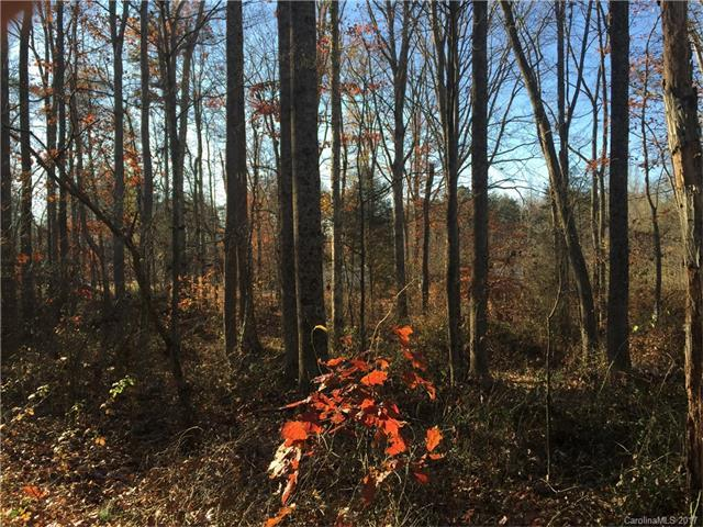 178 Con-Lee Drive, Olin, NC 28660 (#3332244) :: Mossy Oak Properties Land and Luxury