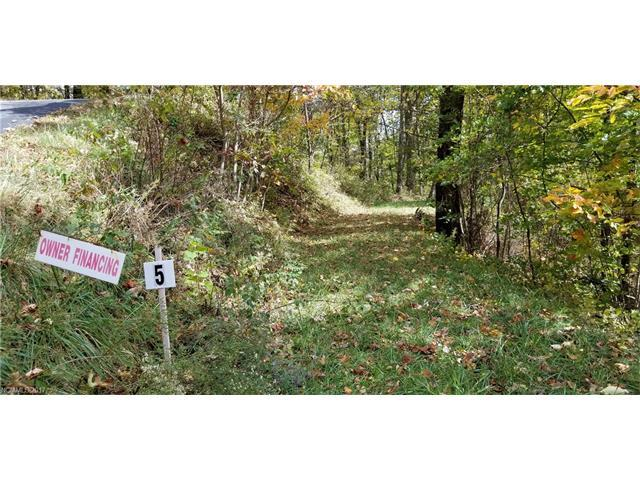 Lot 5 Big Boulder Ridge Road, Maggie Valley, NC 28751 (#3333614) :: Team Southline