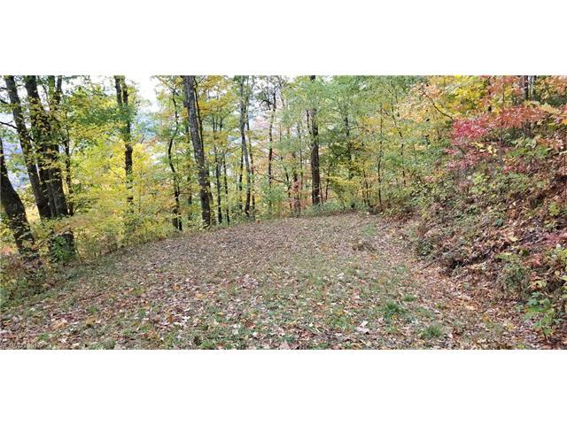 Lot 11 Big Boulder Ridge Road, Maggie Valley, NC 28751 (#3333618) :: Team Southline