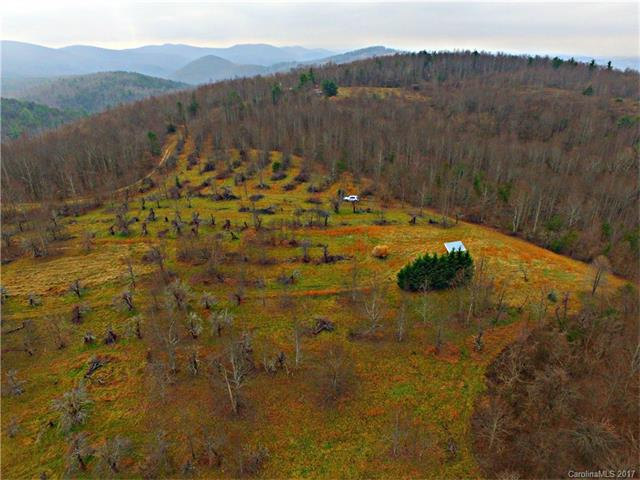41.54 acres Low Gap Road, Hendersonville, NC 28792 (#3334135) :: Exit Mountain Realty