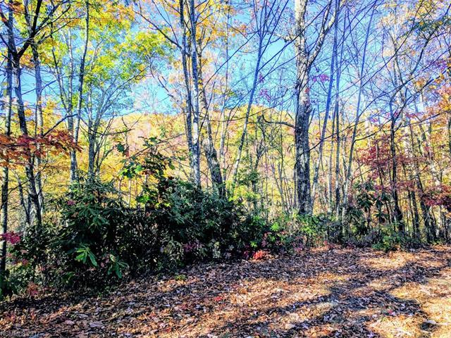 Off Keull Road #0, Waynesville, NC 28785 (#3334429) :: Puma & Associates Realty Inc.