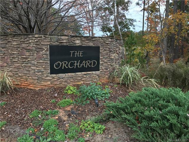 122 Orchard Farm Lane #18, Mooresville, NC 28117 (#3335164) :: Stephen Cooley Real Estate Group