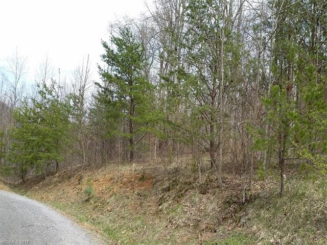 0 Busters Drive Lot 7, Waynesville, NC 28786 (#3335338) :: Exit Mountain Realty