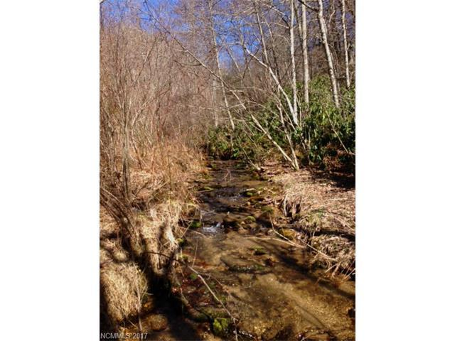 Lot 1 Upper Rock Creek Road, Black Mountain, NC 28711 (#3336442) :: Rinehart Realty