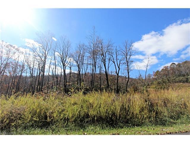 Lot 256 Glen Ridge Trail #256, Lake Lure, NC 28746 (#3338260) :: Burton Real Estate Group