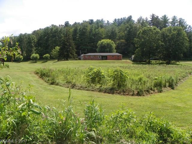 30 Old Mars Hill Highway, Weaverville, NC 28787 (#3338358) :: Caulder Realty and Land Co.