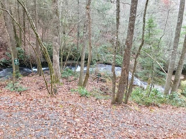 Lot J 109 Mulberry Circle, Brevard, NC 28712 (#3338653) :: Puffer Properties