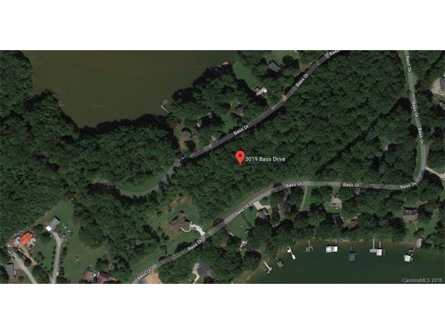 3019 Bass Drive, Sherrills Ford, NC 28673 (#3339177) :: LePage Johnson Realty Group, Inc.