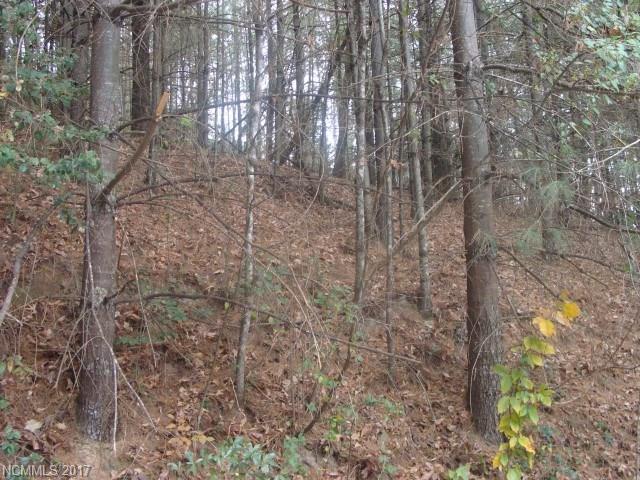 Lot 9 Amanda Drive #9, Penrose, NC 28766 (#3339880) :: Exit Mountain Realty