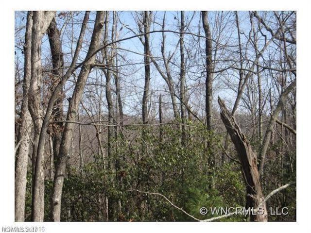 669 Faircrest Lane, Hendersonville, NC 28739 (#3339944) :: Roby Realty