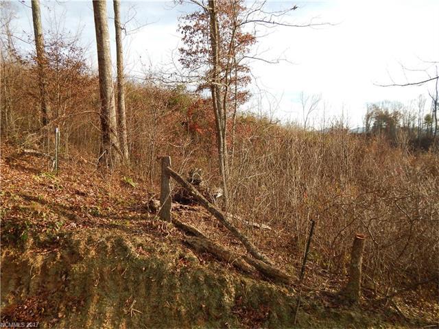 00 Ironwood Drive #19, Waynesville, NC 28785 (#3339958) :: Exit Mountain Realty