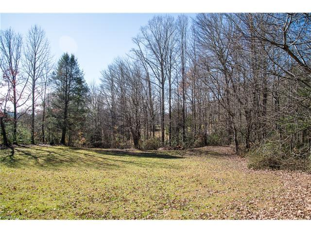 9999 Hunters Field Lane A & B, Mills River, NC 28759 (#3340475) :: Stephen Cooley Real Estate Group