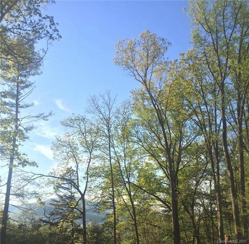 4.1 Acres Shadow Ridge Drive, Fletcher, NC 28732 (#3341058) :: Stephen Cooley Real Estate Group