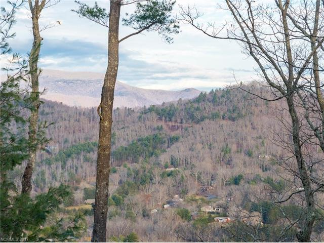 133 Boulder Creek Way #11, Asheville, NC 28805 (#3341793) :: Puffer Properties