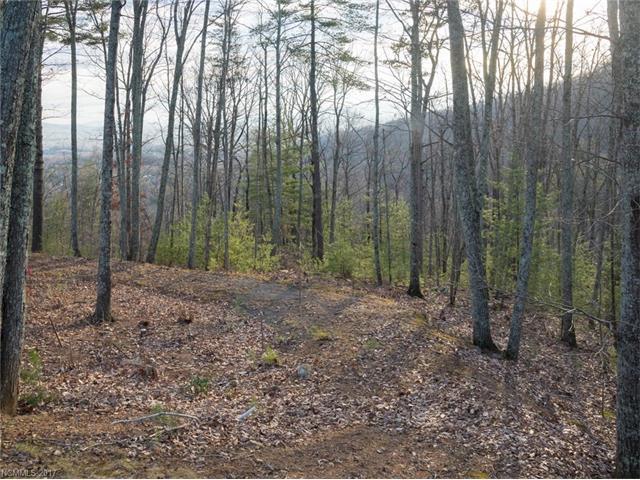 119 Boulder Creek Way #16, Asheville, NC 28805 (#3341804) :: Stephen Cooley Real Estate Group