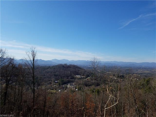 362 Baird Cove Lane #23, Asheville, NC 28804 (#3343554) :: The Temple Team